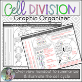 Cell Division Overview Organizer (Mitosis, Cell Cycle)
