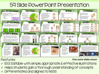 Cell Division PowerPoint, Notes & Exam