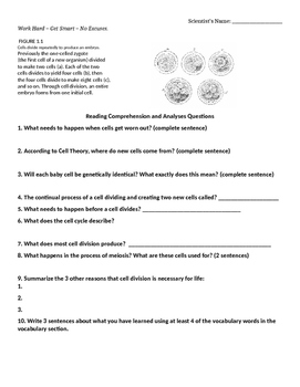 Cell Division Reading Comprehension