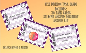 Cell Division Task Cards - Mitosis & Meiosis