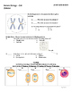 Cell Division Test