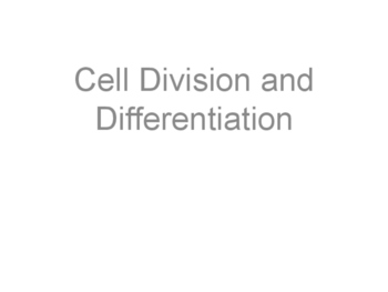 Cell Division and Differentiation Presentation