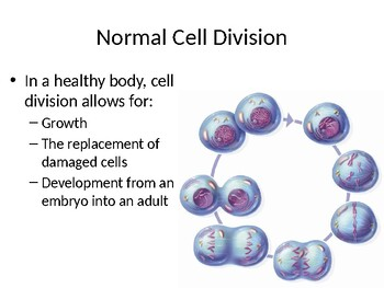 Cell Division and Reproduction