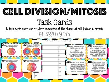 Cell Division/Mitosis Task Cards + Record Sheet