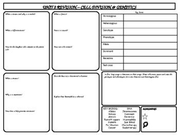 Cell Divison & Genetics Revision Mat