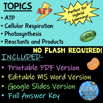 Cell Energy WebQuest: Comparing Cell Respiration and Photosynthesis