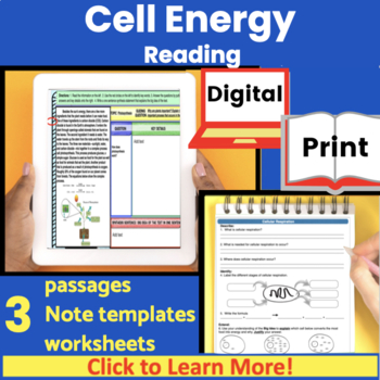 Cell Energy (Photosynthesis and Respiration) Guided Reading