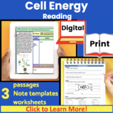 Cell Energy | Photosynthesis | Cellular Respiration | Guid