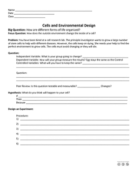 Cell Environmental Design Project