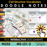 Cell Function MS-LS1-2 Vocabulary Doodle Notes plus INTERACTIVE