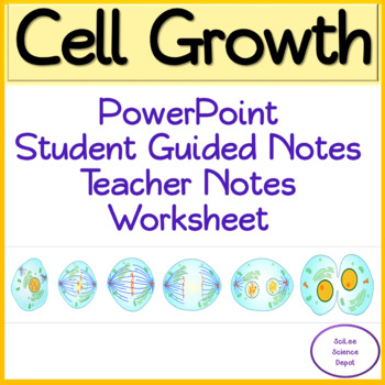 Cell Growth And Division Worksheets Teaching Resources TpT