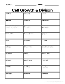 Cell Growth & Division Vocabulary Bundle