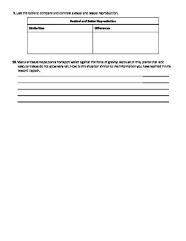 Cell Growth and Division - Background and Mitosis - Worksheet Packet