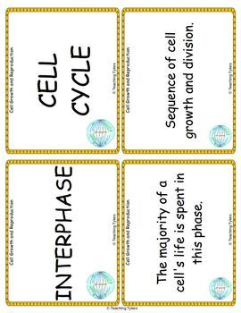 Cell Growth and Reproduction Vocabulary Cards