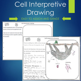 Cell Organelles Drawing PBL Project Based Learning