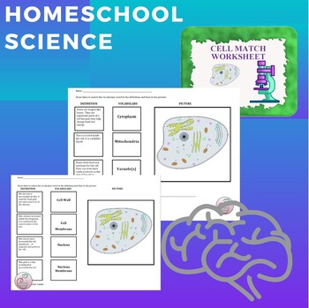 home dna csta science spot worksheets home best free printable worksheets. Black Bedroom Furniture Sets. Home Design Ideas