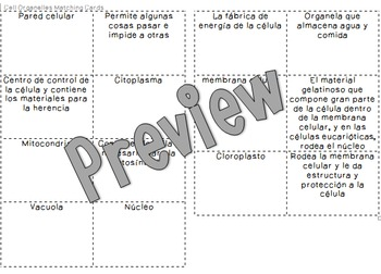 Cell Matching Cards and Table in Spanish