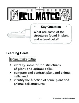 AIMS Activity: Cell Mates