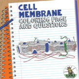Cell Membrane Coloring Activity: Help Students Identify Ke