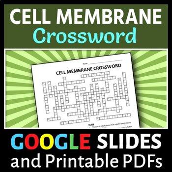 Cell Membrane Crossword {Editable}