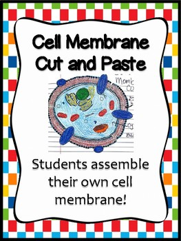 Cell Membrane Cut and Paste *INB*