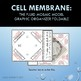 Cell Membrane Graphic Organizer Foldable for Interactive Notebook