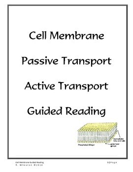 Cell Membrane Guided Reading Activity