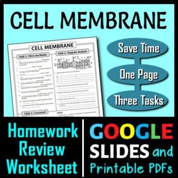 Cell Membrane Homework Review Worksheet / Test Prep {Editable}