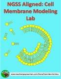 Cell Membrane Modelling Lab