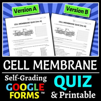 Cell Membrane Quiz - Two Versions {Editable}