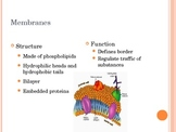 Cell Membrane Structure and Cell Transport