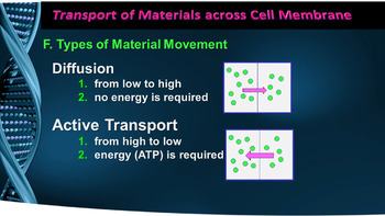 Cell Membrane Suctures, Diffusion. A Lesson a Day PPT Notes (Gr 7-12)
