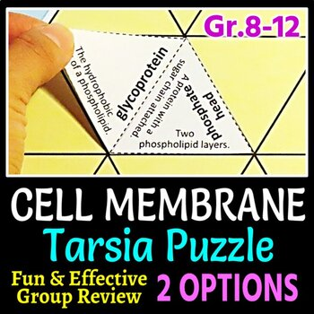 Cell Membrane Tarsia Puzzle - Review Game (2 Difficulty Levels)