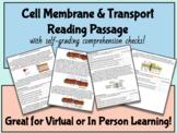 Cell Membrane & Transport Reading -w/ Self-Grading Comprehension Checks!
