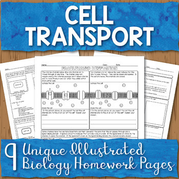 Cell Membrane Transport Unit Homework Pages