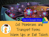 Cell Membrane and Transport Google Form Exit Ticket or War