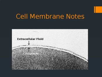 Cell Membrane and Transport Notes (NGSS HS-LS1-2 Aligned)