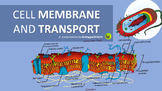 Cell Membrane and Transport PPT