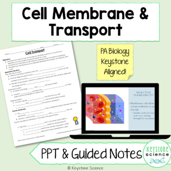 Cell Membrane and Transport PowerPoint and Guided Notes Biology Keystone Aligned