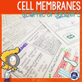 Transport across Cell Membranes (Diffusion, Osmosis & Active Transport)