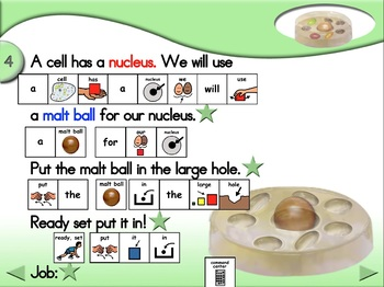 Cell Model - Animated Step-by-Step Science - PCS