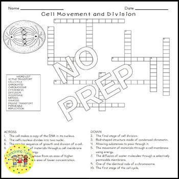 Cell Movement and Division Science Crossword Puzzle Coloring Middle School