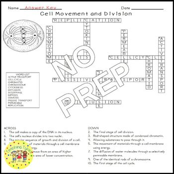 Cell Movement and Division Crossword Puzzle