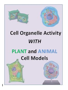 Cell Organelle Activity to Use with Plant and Animal Models