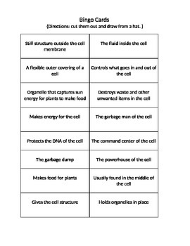 Cell Organelle Bingo