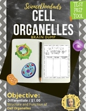 Cell Organelle - Brain Dump