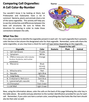 Cell Organelle Structure Function Color By Number Tpt
