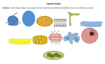 Cell Organelle Cut & Paste