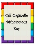 Cell Organelle Dichotomous Key- 8th Grade STAAR Review on 7.12D & 7.11A