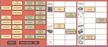 Cell Organelle Drag-N-Drop App